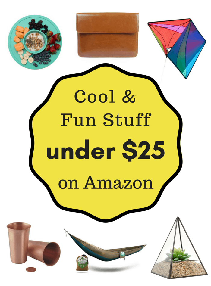 Cool & Fun Stuff On Amazon Under $25