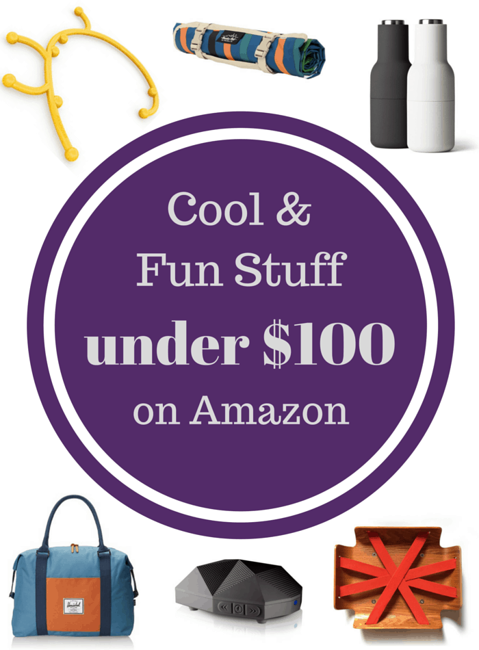 Cool & Fun Stuff on Amazon Under $100